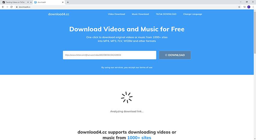 tik tok video download without watermark online